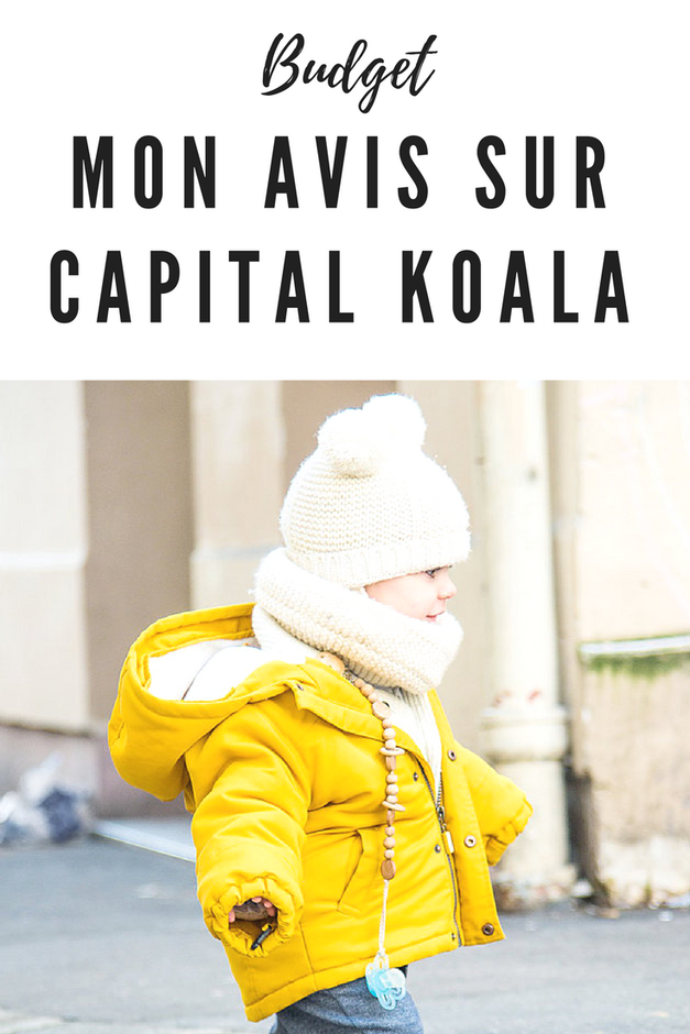 avis capital koala